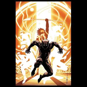 Pantera Negra nº 5
