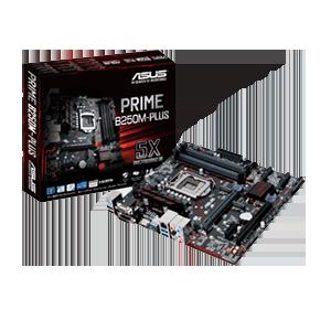 Asus Prime B250M-Plus SK1151