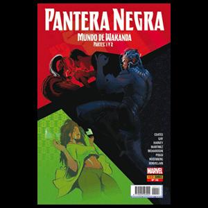 Pantera Negra nº 13