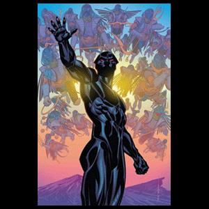 Pantera Negra nº 22