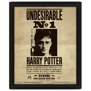 Poster 3D Harry Potter: Harry Potter y Sirius