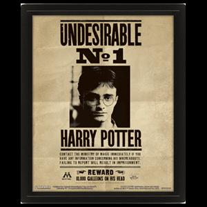 Cuadro 3D Harry Potter: Harry Potter y Sirius