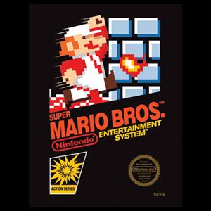 Lienzo Super Mario Bros NES
