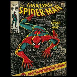 Lienzo Marvel: Spiderman 100º Aniversario