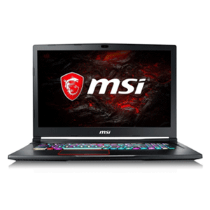 "MSI GE73 RAIDER RGB 8RE-466ES - i7-8750H - GTX 1060 6GB - 16GB - 1TB HDD + 256GB SSD - 17,3"" FHD 120Hz - W10"