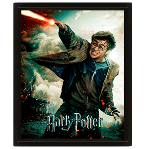 Cuadro 3D Harry Potter: Harry
