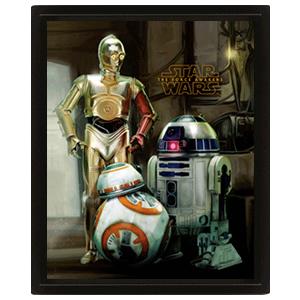 Cuadro 3D Star Wars Ep7: Droids