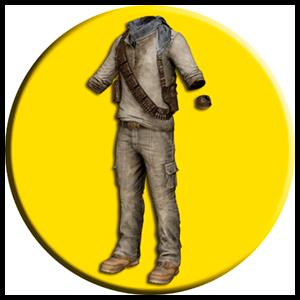 PlayerUnknown's Battlegrounds PS4 - DLC