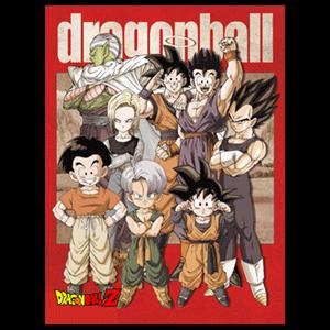 Lienzo Dragon Ball