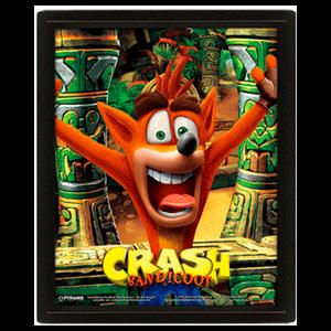 Cuadro 3D Crash Bandicoot
