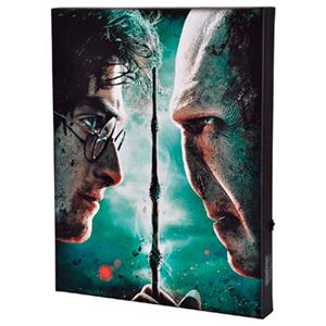 Lienzo con Iluminación 30x40cm Harry Potter: Harry vs Voldemort