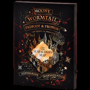 Lienzo con Iluminación 30x40cm Harry Potter: Mapa del Merodeador
